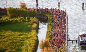 Mezza maratona Cavallino-Jesolo 2016